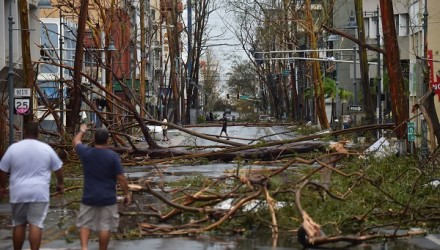 Men walk damaged trees after the passage of Hurricane Maria, in San Juan, Puerto Rico, on September 20, 2017. Maria slammed into Puerto Rico on, cutting power on most of the US territory as terrified residents hunkered down in the face of the island's worst storm in living memory. After leaving a deadly trail of destruction on a string of smaller Caribbean islands, Maria made landfall on Puerto Rico's southeast coast around daybreak, packing winds of around 150mph (240kph).  / AFP PHOTO / HECTOR RETAMAL