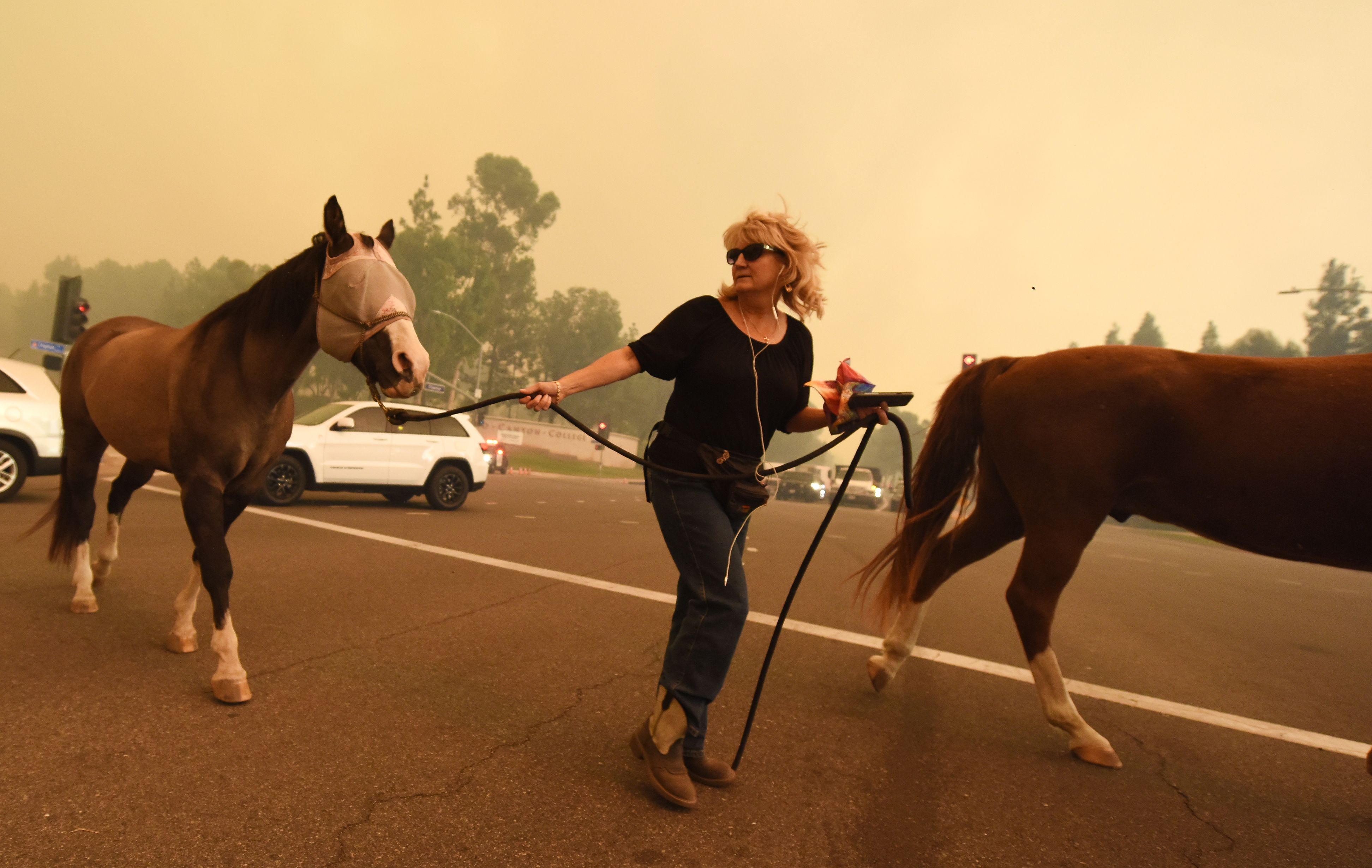 A woman evacuates horses as strong Santa Ana winds blow fire and smoke from the Canyon 2 Fire  toward them on October 9, 2017 in Orange, California.   / AFP PHOTO / Robyn Beck